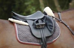 Sattel auf einem Pferd Lizenzfreie Stockbilder