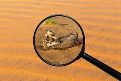Sattel für Kamel auf dem Sand lizenzfreies stockfoto