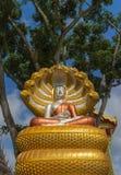 Satue de Buda que se sienta con el rey del naga Fotos de archivo libres de regalías