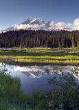 Saturated Color at Reflection Lake Mt. Rainier National Park Ver Royalty Free Stock Photography