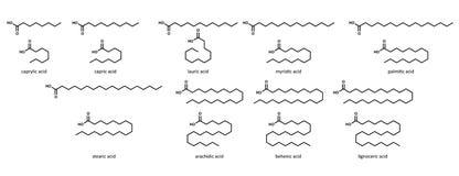Saturated fatty acids (set): caprylic, acid, capri Royalty Free Stock Image