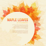 Saturated maple leaves background with space for text. Saturated autumn leaves background with round space for text. Vector background with maple leaves in a Stock Image