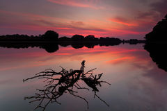 Saturated red sunrise over lake Stock Photography