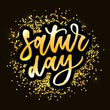 Saturday, day of the week, hand drawn lettering. Calligraphic element for your design. Vector illustration vector illustration