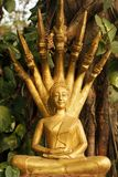 Saturday golden buddha Royalty Free Stock Photos