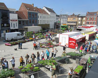 Saturday Market, Belgium. AALST, BELGIUM, JUNE 21 2014: View of the Hop Markt and the Saturday morning market in Aalst. The weekly market attracts thousands of Stock Image