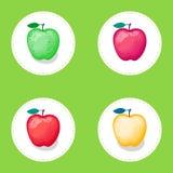 Satz Äpfel von verschiedenen Farben Vector Illustration auf rundem weißem Schutzträger und grünem Hintergrund Lizenzfreie Abbildung