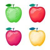 Satz Äpfel von verschiedenen Farben Vektorabbildung getrennt auf weißem Hintergrund Vektor Abbildung