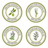 Satz ätherisches Öl beschriftet Kalk, Lemongras, Pfefferminz, weiße Zeder vektor abbildung