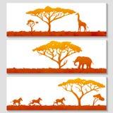 Satz afrikanische Fahnen Stockfotos