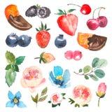 Satz Aquarellbeeren, Kirsche, Erdbeere, Orange in der Schokolade, in den Blättern der Minze und im eucaliptus Vier Schneeflocken  Stockfotografie
