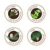 Satz Aufkleber der ätherischen Öle Kiefer, Zeder, Teebaum, Melisse lizenzfreie abbildung