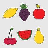 Satz Aufkleber mit der bunten gezeichneten Hand trägt Früchte Stockfotos