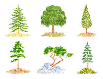 Satz Bäume, Aquarell-Hand gezeichnet und gemalt Lizenzfreies Stockfoto