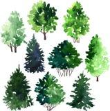 Satz Bäume, die durch Aquarell zeichnen stockfotografie