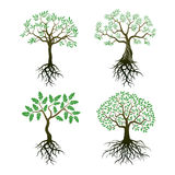Satz Bäume und Wurzeln Lizenzfreies Stockfoto