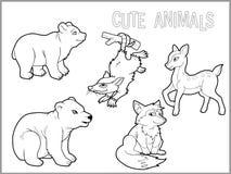 Satz Bilder von jungen Tieren lizenzfreie abbildung
