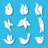 Satz Bilder von Vögeln Lizenzfreie Stockfotos