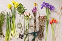 Satz Blumen für die Herstellung des Blumenstraußes mit Instrument Lizenzfreie Stockfotografie