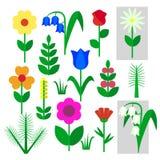 Satz Blumen isoliert gemalt auf einem weißen Hintergrund Die Zeichnung des Kindes stieg, Glockenblume, Kamille, Maiglöckchen, Gar Lizenzfreie Stockfotografie