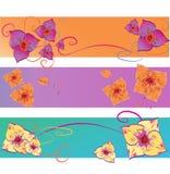 Satz Blumen-Vektor-Hintergründe. Abstraktes Blumenmuster mit Fahne drei Lizenzfreie Stockfotos