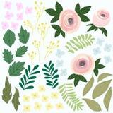 Satz Blumendesign Garten Colorfull-Illustration, grafischer Vektor Lizenzfreie Stockfotografie