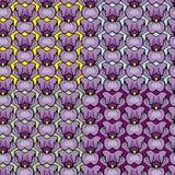 Satz Blumenverzierungen -, die mit Iris nahtlos sind, blüht Stockbilder