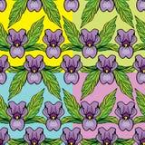 Satz Blumenverzierungen -, die mit Iris nahtlos sind, blüht Stockfoto