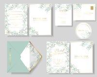 Satz botanische Blätter winden Hochzeitseinladungskarte Grüner und tadelloser Farbton Lizenzfreies Stockfoto