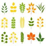 Satz bunte Blätter, Illustration stock abbildung