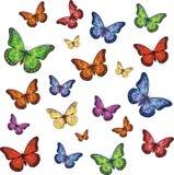 Satz bunte realistische lokalisierte Schmetterlinge Lizenzfreies Stockfoto