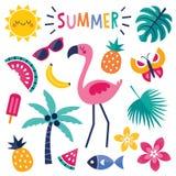 Satz bunte Sommerelemente mit dem rosa Flamingo lokalisiert lizenzfreie abbildung