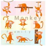Satz der Affefamilie Lizenzfreies Stockfoto