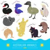 Satz der australischen Tierikone der netten Karikatur Stockfotografie