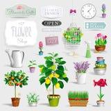 Satz der Blumentöpfe und der Gartenwerkzeuge Stockfotos