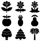 Satz der einfachen schwarzen Ikone der Blumen, der Bäume und der Früchte Lizenzfreie Stockfotos