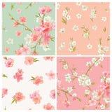 Satz der Frühlings-Blüte blüht Hintergrund Lizenzfreie Stockbilder