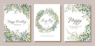 Satz der Karte mit den schönen Zweigen mit Blättern Hochzeitsverzierung c lizenzfreie abbildung