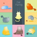 Satz der Katzenfamilie Stockbilder