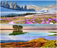 Satz der Landschaft mit 4 Jahreszeiten Stockbilder