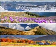 Satz der Landschaft mit 4 Jahreszeiten Lizenzfreie Stockfotos