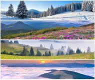 Satz der Landschaft mit 4 Jahreszeiten Stockbild