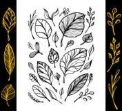 Satz der Struktur des Handabgehobenen betrages der Blätter schwärzen auf Weiß in der Linie Kunst Stockfotos