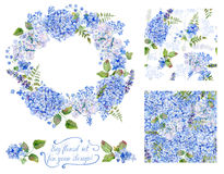 Satz der unterschiedlichen blauen, cyan-blauen Hortensie, Lavendel, Korinthe, fram Lizenzfreie Stockbilder