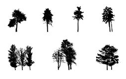 Satz des Baum-Schattenbildes lokalisiert auf Weiß Lizenzfreie Stockfotografie