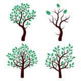 Satz des Baums mit grünen Blättern Stockfotografie