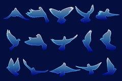 Satz des Fliegens von blauen Tauben auf blauem Hintergrund Lizenzfreies Stockfoto
