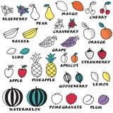 Satz des Gekritzels trägt - für Einklebebuch oder Design Früchte Stockfoto