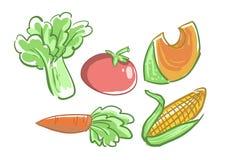 Satz des Gemüses Stockbild