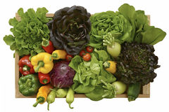 Satz des Gemüses Lizenzfreie Stockbilder